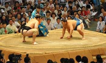 1312_sumo_main